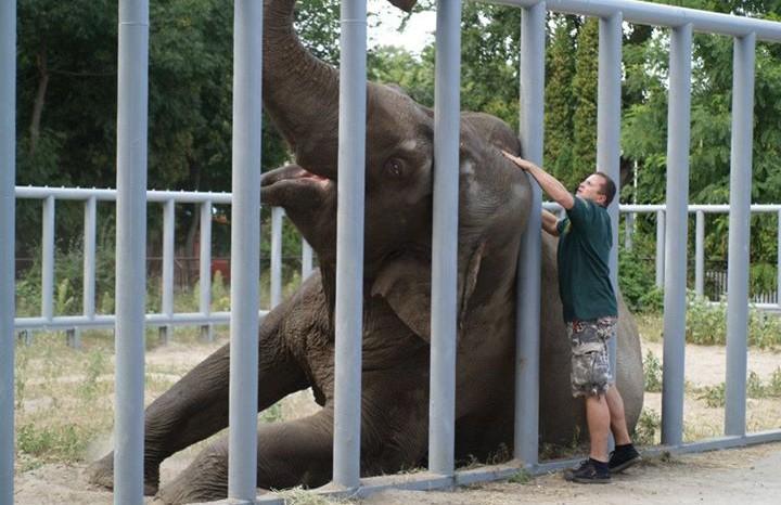 В Киевском зоопарке новый директор